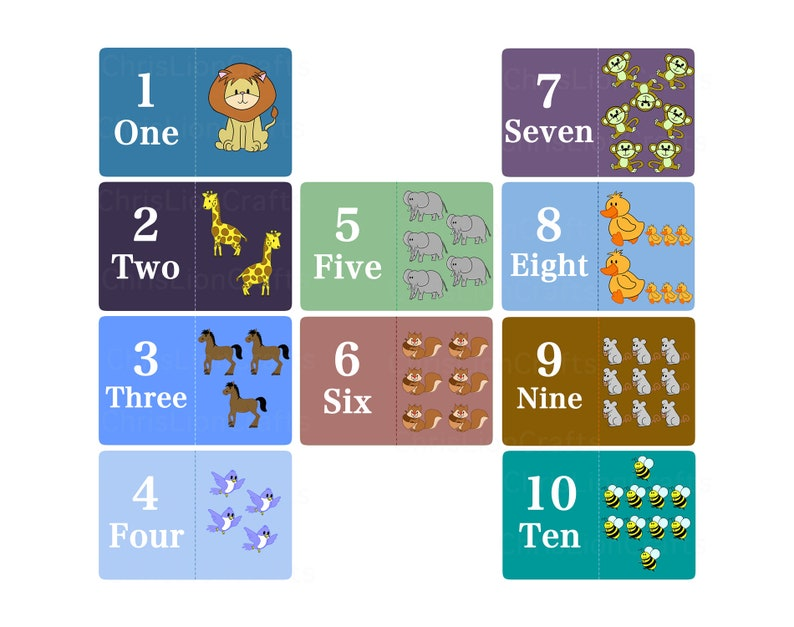 Math cards set  Animals flash cards  Colorful Number image 1