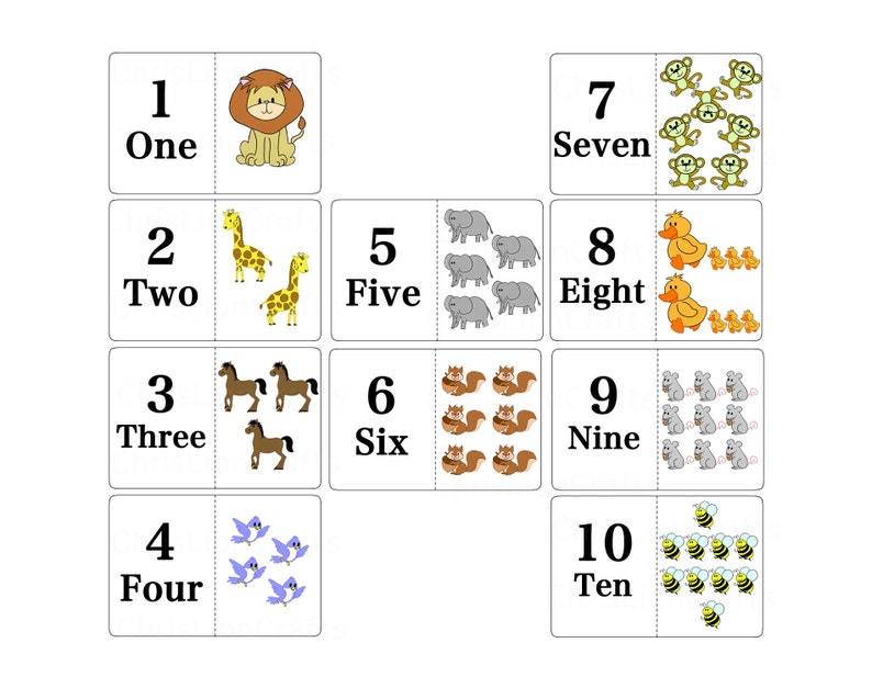 Animal Numbers Card Set Animals Flash Cards Plain Number Etsy