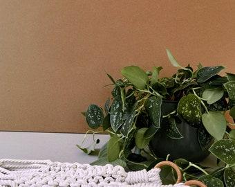 Mother's Day gift, Hanging planter, Pot holder macrame, Boho plant hanger, Modern boho wedding, Macrame planthanger, Macrame pot holder