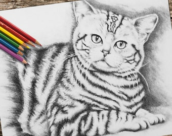 Adult Coloring Page, Printable coloring page, coloring book for adults, Instant download coloring, Tiger Cat coloring page, coloring page
