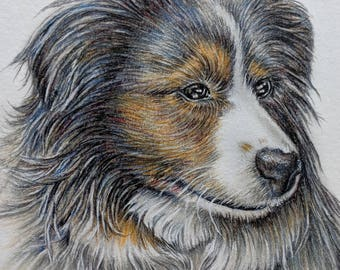 Pet memorial, loss of pet, Custom Pet Portrait in color of ONE PET, Pet Memorial, Hand Drawn Pencil Portrait from your Photo, Pet Drawing