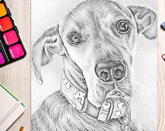 Coloring Book page, Coloring Pages, Instant download coloring, Great Dane, adult coloring, coloring for adults, Printable coloring page