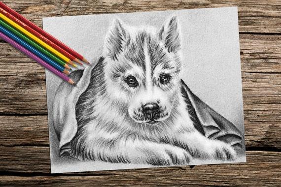 Adultos página para colorear para imprimir para colorear | Etsy