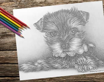 Adult Coloring Page, Coloring Pages, Instant download coloring, Puppy Dog coloring page, Printable coloring page, coloring book for adults