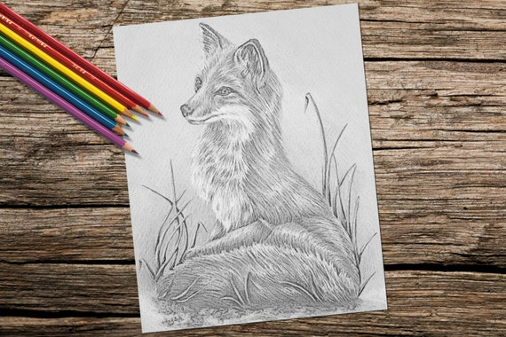 Adult Coloring Page Fox Grayscale Coloring Pages Instant Download Coloring Fox Coloring Page Best Selling Printable Coloring Page