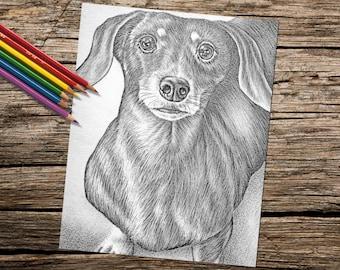 Druckbare Malvorlagen, Erwachsenen Färbung Seite, Dackel, Hund Malvorlagen, Haustier, Hund Mama, Hundeliebhaber, Hunde, Hund Zeichnung, Pet Art