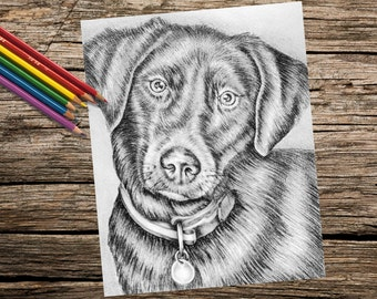 Printable coloring, Adult Coloring Page, coloring book for adults, Instant download coloring, Labrador, coloring pages, coloring for adults