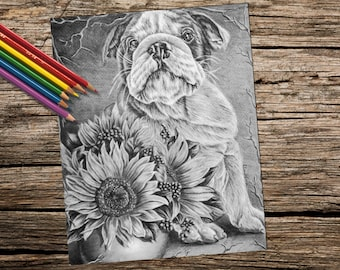 Printable coloring page, Adult Coloring Page, Instant download coloring, Coloring Pages, Bulldog, Sunflowers, Coloring Book For Adults