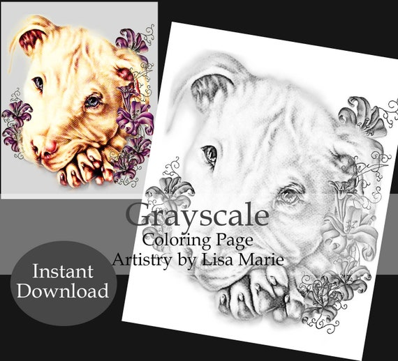 Printable Coloring, Coloring Book page, Coloring Pages, Instant download  coloring, Pit Bull, adult coloring, coloring for adults, dog art