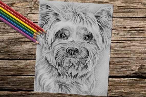 Coloring Pages Best Selling Items Book For Adults