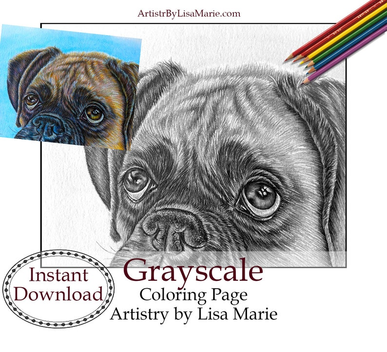 Pug Dog Coloring Book Page Printable Instant Download ...