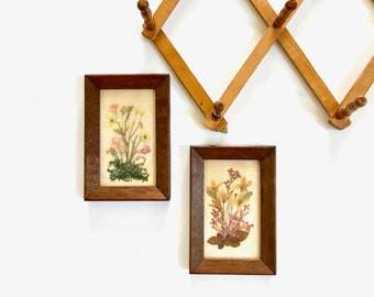 Vintage Wall Hanging | Pair of Pressed Flower Framed Pictures | Home Wall Decor