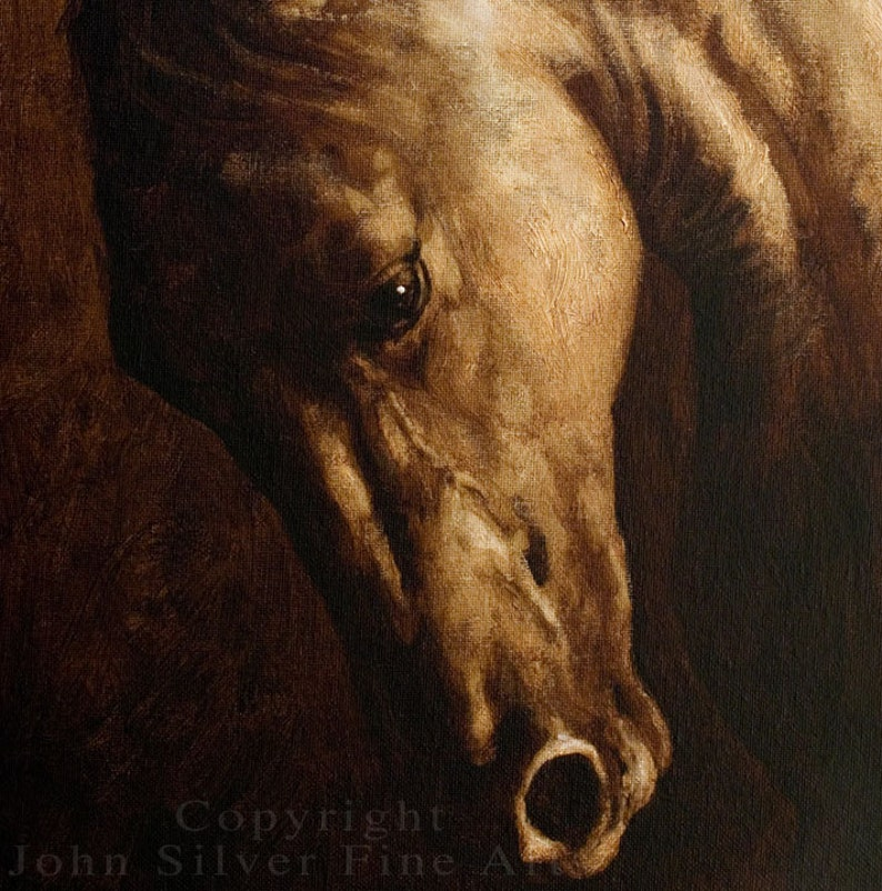 Horse Portrait by award winning artist JOHN SILVER Personally signed A4 or A3 size Print HO002SP