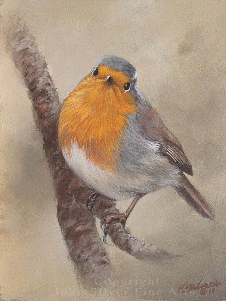 Robin Portrait. Original Oil Painting by award winning artist image 0