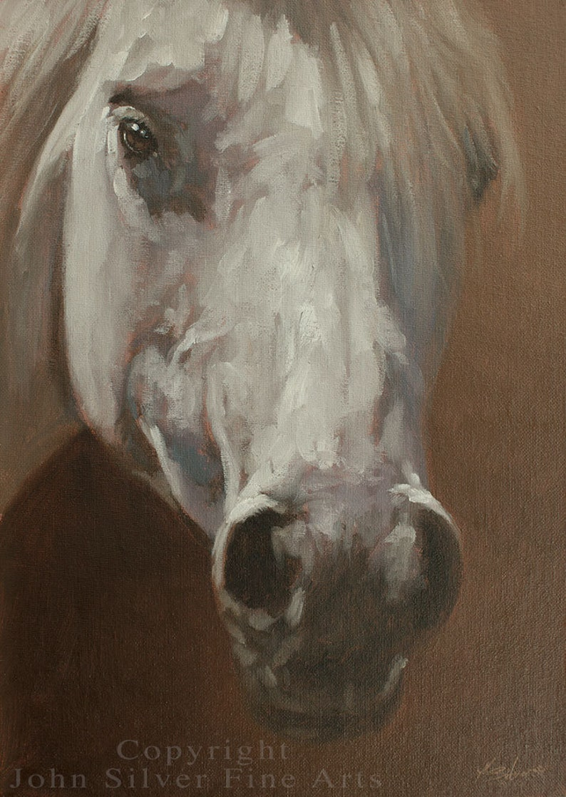 White Horse Portrait. Original Oil Painting by award winning image 0