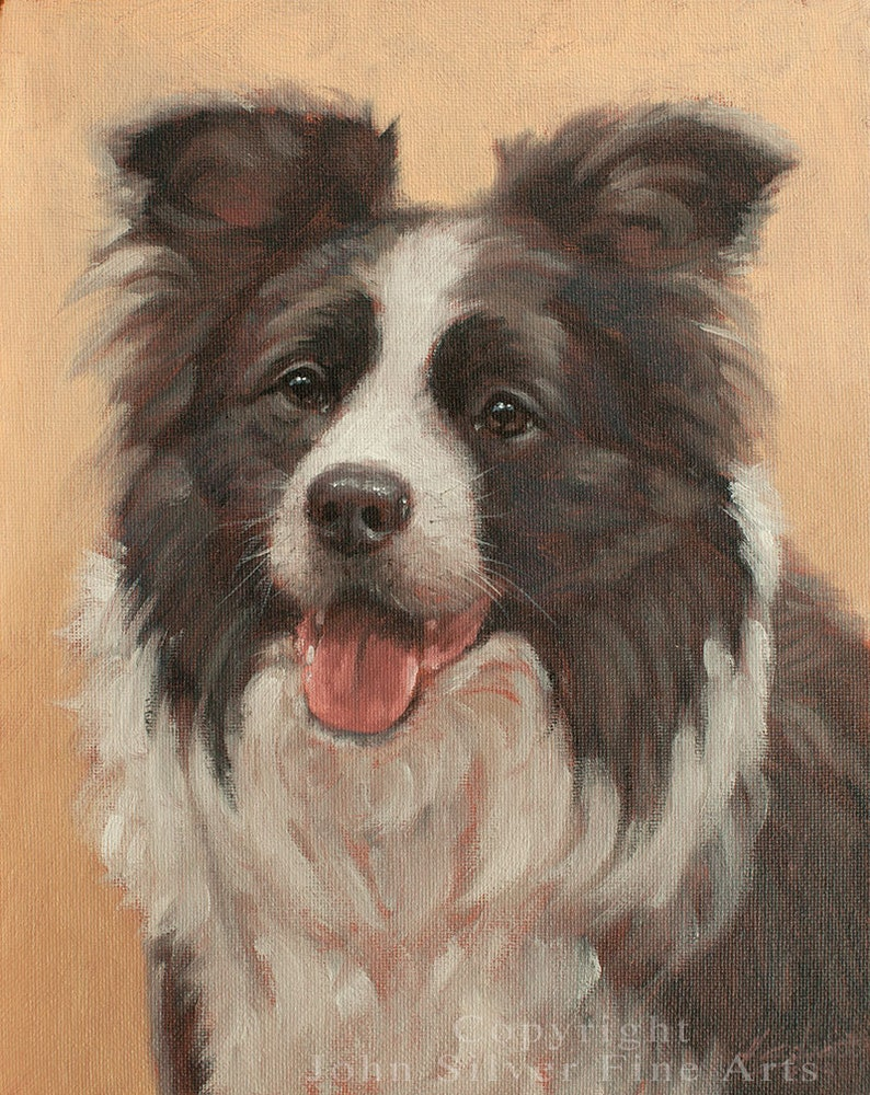Border Collie Dog Classical Portrait. Moriaty  image 0