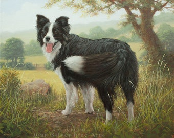Border Collie Dog Classical Portrait. Original Oil Painting by UK artist JOHN SILVER B.A. 50 x 40 cm On Stretched Canvas.
