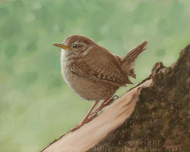 Wren Portrait. Original Oil Painting by award winning artist image 0