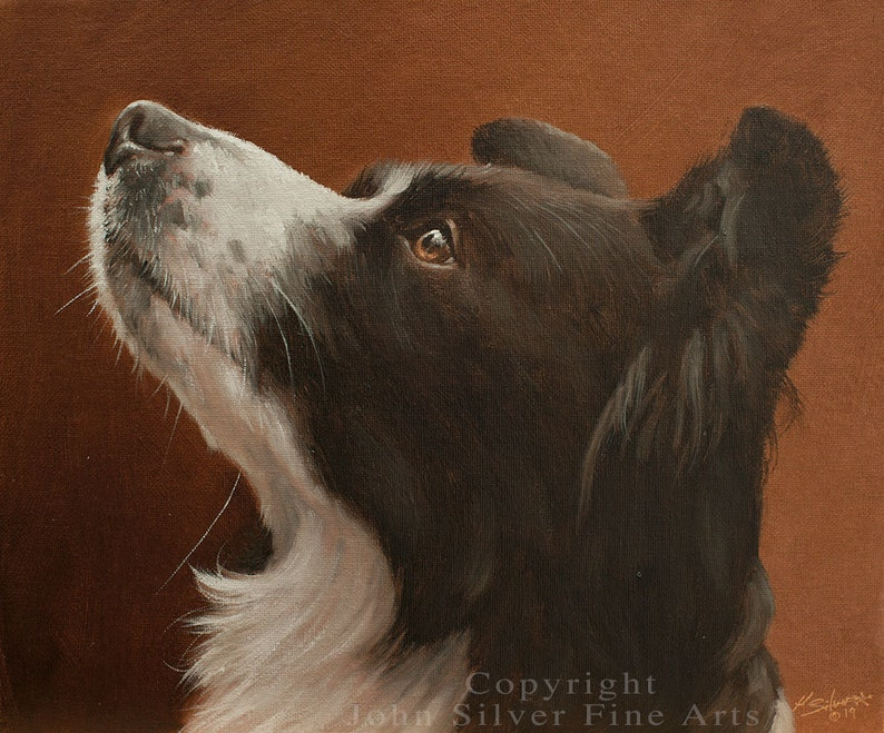 Border Collie Dog Classical Portrait. Original Oil Painting by image 0