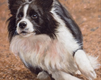 Aceo Dog Print, Border Collie. From an Original Painting by JOHN SILVER. Personally signed. BC015AC