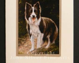 Border Collie Dog Portrait Hand Made Greetings Card. From Original Paintings by JOHN SILVER. GCBC002