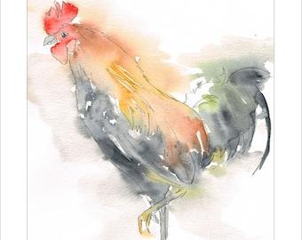 Rooster Cockerel Portrait Wildlife Art by Lesley Silver BA, Wife of award winning artist John Silver. Personally signed A4 Print. LRO002SP
