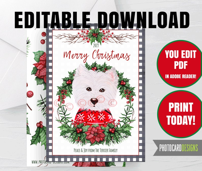 Cairn Terrier Dog Christmas Card Puppy Buffalo Check Plaid image 0