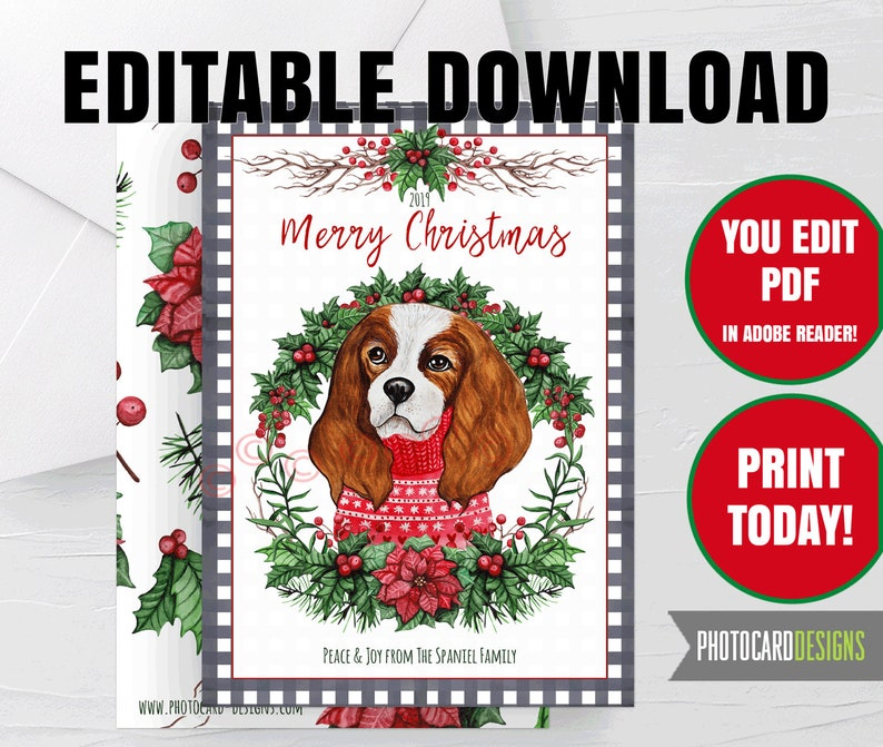 Cocker Spaniel Dog Christmas Card Puppy Pet Buffalo Check image 0