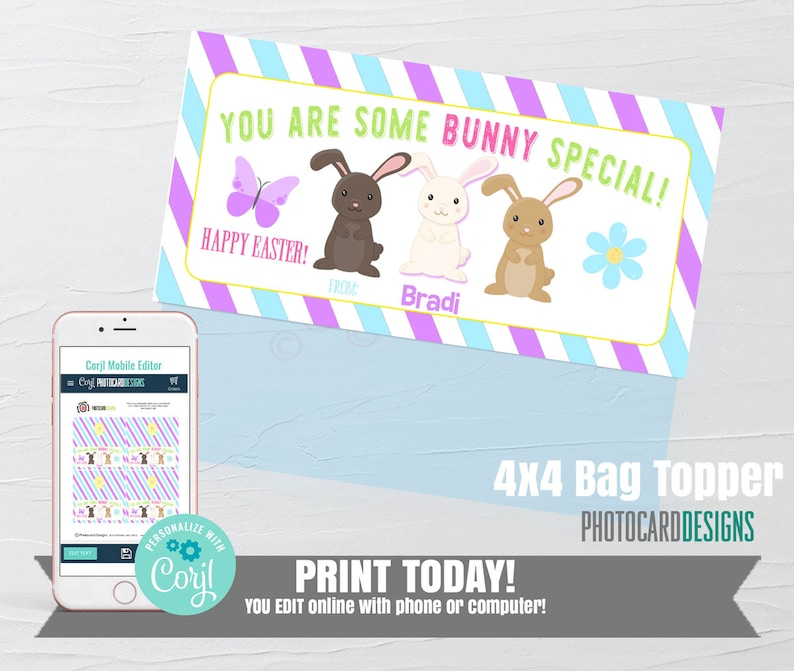 Easter Bag Topper Easter Printable Tag Some Bunny Special image 0
