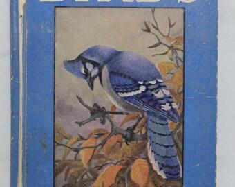 Birds Book 2 by Julius King Vintage 1934 Children's Book