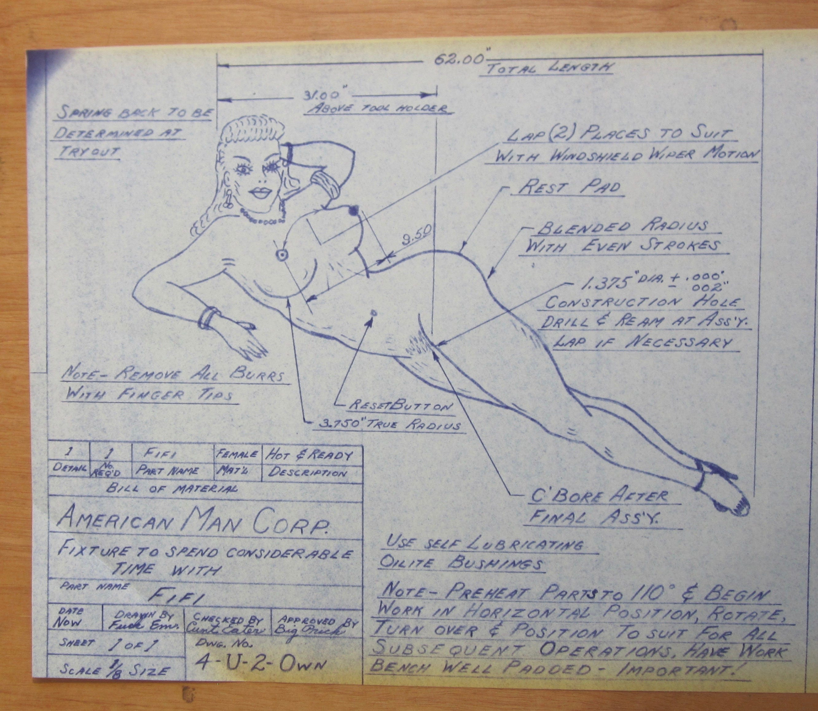 1950's American Man Corp  Sexy Pin Up Blue Print - FIFI - Free Shipping