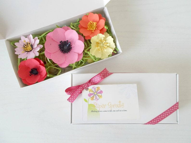 Plantable Paper Flower And Seed Bomb Sample Set Unique Gardening Gift Eco Friendly Paper Embedded With Flower Seeds