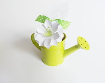 Mini Watering Can Filled With Wildflower Seed Bombs and Seeded Paper - Hostess Gift, Teacher Gift, Mother's Day Gift