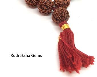 6 Six  Mukhi Ruraksha Collector Mala- Collector 32 +1 Rudraksha Beads - Hand knotted Mala Kantha - Premium Rudraksha Mala - 6 Face Rudraksh