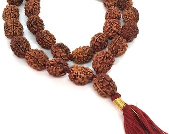 3 Three Mukhi Rudraksha Mala Kantha  Surya Agni Siddha Mala 33 +1 Rudraksh Japa Beads - 3 face Rudraksha Mala - Rudraksha Collector Mala