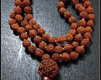 Rudraksha 7 Mukhi Guru Baad Mala, Rudraksh Japa Mala Rosary 108 +1 Bead Yoga Hindu PRAYER MEDITATION Raiki genuine 7 Mukhi Faces  Energised