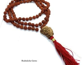 Rudraksha 1 Mukhi Guru Baad Mala, Rudraksh Japa Mala Rosary 108 +1 Bead Yoga Hindu PRAYER MEDITATION Raiki genuine 5 Mukhi Faces  Energised