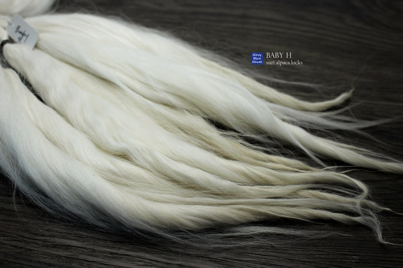 natural fibers pure white with ivory blonde tips washed and combed locks suri alpaca locks 11-12 BABY H for doll hair: reroot or wig