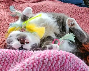 Neon Hair Ties Cat Toys, Set of 2 Ties, Unique Cat Toys, Fun Cat Toys, Feather Cat Toys, Catnip Toys, Valerian Toys, Silver Vine