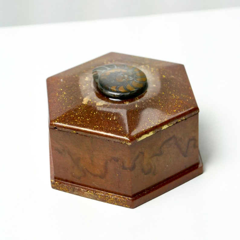 Jewellery box with ammonite unique by AnnaBlumenkind can with real fossil jewellery box made of epoxy resin