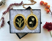 baby 39 s breath and cedar locket botanic jewelry real plants made in vermont