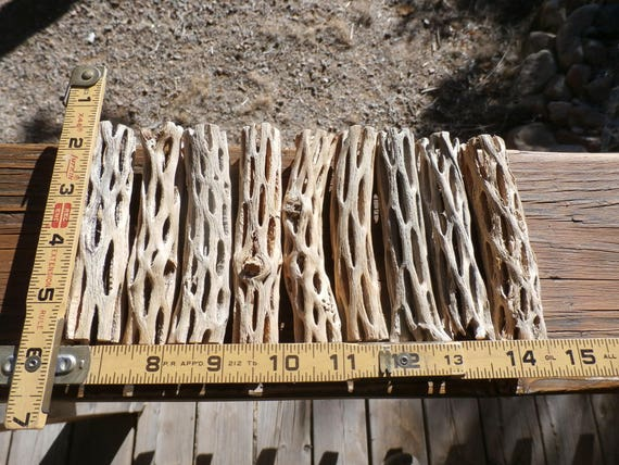 2 lbs APPROX 25 PIECES CLEAN NICE PIECES Box of Cholla Wood TWO