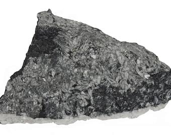 Natural Pinolith Slice Pinolite Slab 117x56x7mm Lapidary Rough Cabochon Supply Raw Crystal Collector