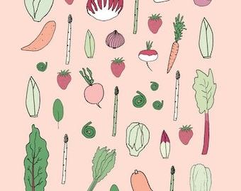 Affiches des aliments locaux des 4 saisons