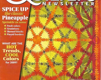 Quilter's Newsletter June/July 2009 - Applique, Pineapple, Foundation Piecing, and More