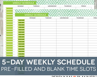 daily schedule printable editable times half hourly weekly weekday planner for moms homeschool planner chevron theme instant download