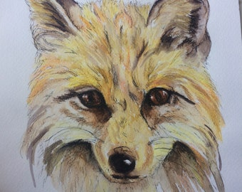 Fox original fineliner and watercolour painting