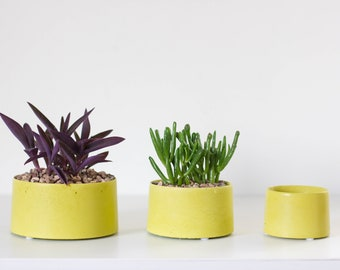 Concrete Planter for Succulents and Cactus - Chartreuse Green