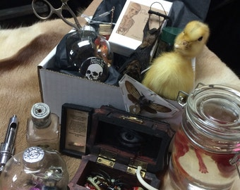 A Pandora's Box, your own surprise box of oddities, customised!