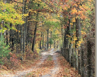 Fall Photography Autumn Leaves Wall Art Landscape Nature Photograph Autumn Road Rustic New England Foliage Colors Print Trees Photo Artwork
